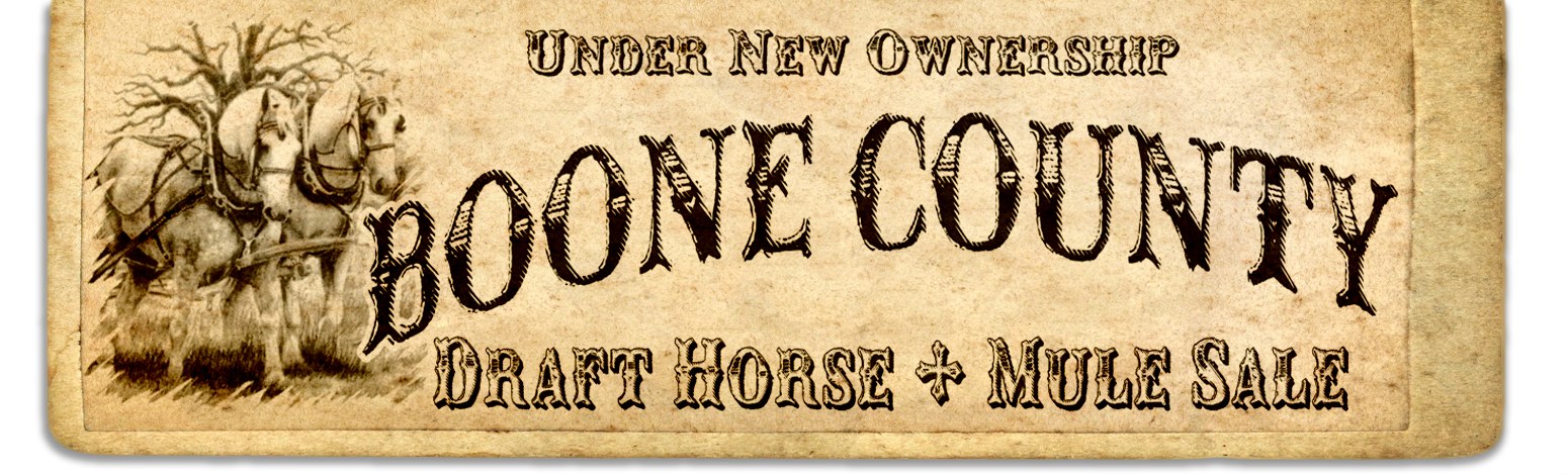 Boone County Draft Horse and Mule Sale